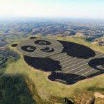 panda-usina-solar
